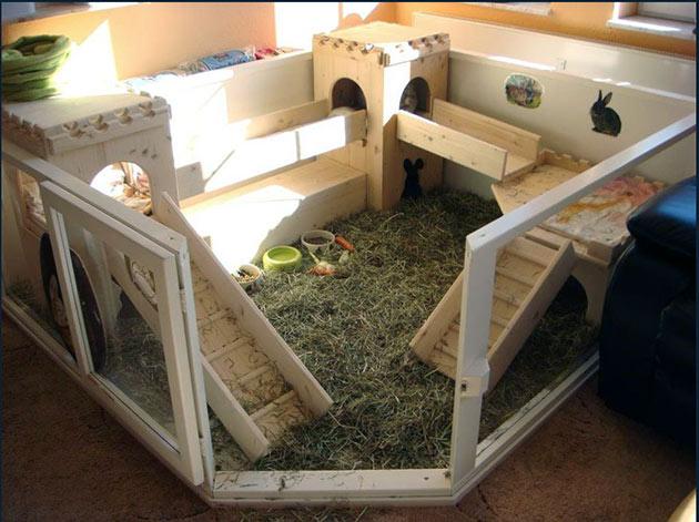 Вольер для ангорских кроликов можно организовать, как дома, так на улице