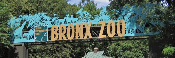 Бронкский зоопарк  — Самые большие зоопарки мира