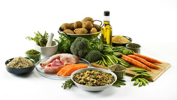 Полезные фрукты и овощи для собак