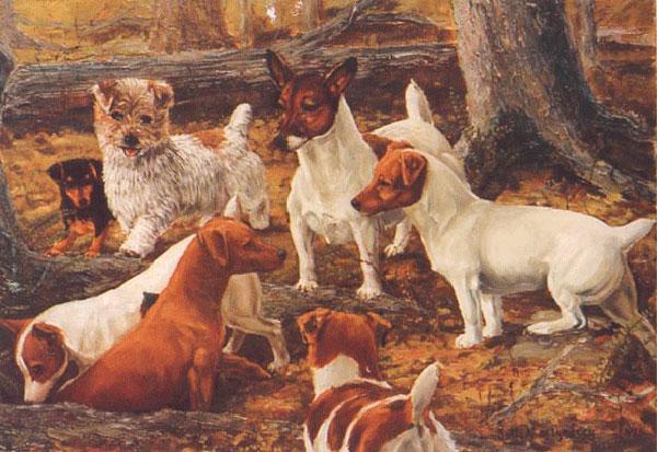 пастор Джек Рассела из графства Девоншир - первый кто вывел эту породу собак