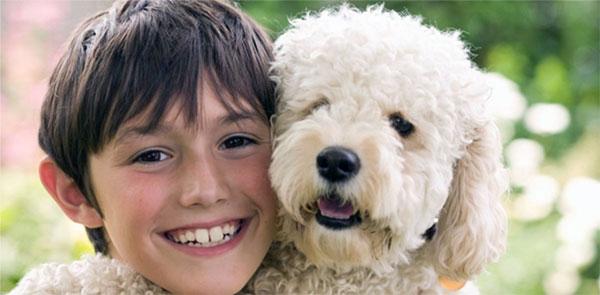 Гипоаллергенные породы собак зависит от множества факторов, которые объяснить сможет врач