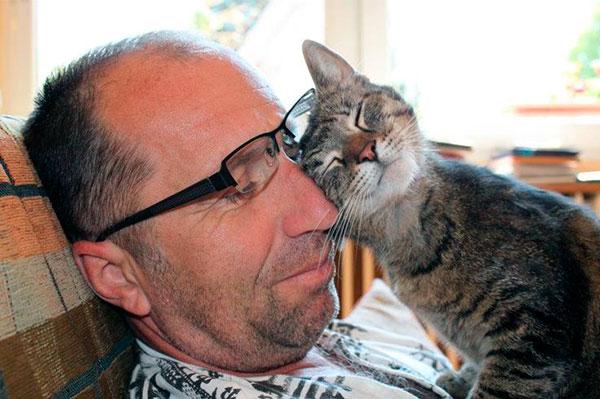 Идилия может возникнуть как с котом, так и с кошкой