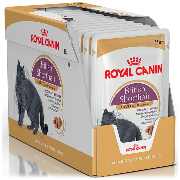 Наиболее оптимальным породным корм является BRITISH SHORTHAIR от производителя «Роял Канин»