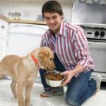 Холистик корма для собак