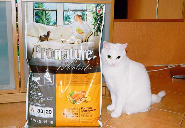Холистик корма для кошек