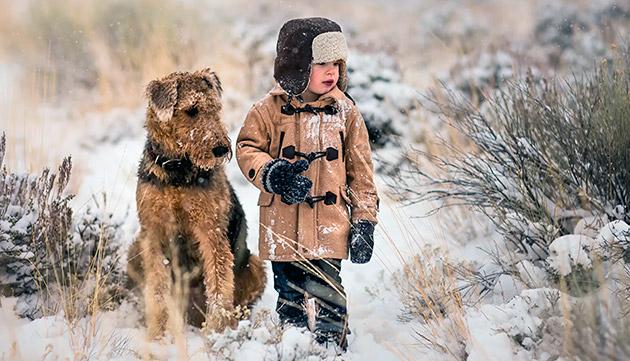 Заводить эрдельтерьера, когда у вас подрастает малыш не стоит - взрослые собаки весят более 30 кг