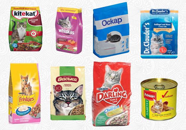 Корма эконом класса для кошки заглушают чувства голода, но не уталяют его
