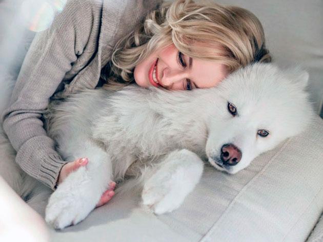 Цена на самоедскую собаку сильно разница - все зависит от целей приобретения