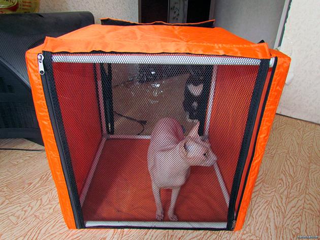 Палатка для кошек на выставку своими руками 21