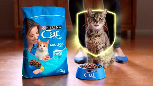 После оценки экспертов можно сделать вывод, что корма Cat Chow — не самого высокого качества