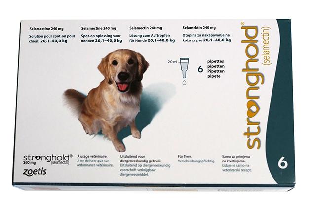 Владельцы собак отмечают высокую эффективность стронхолда для собак