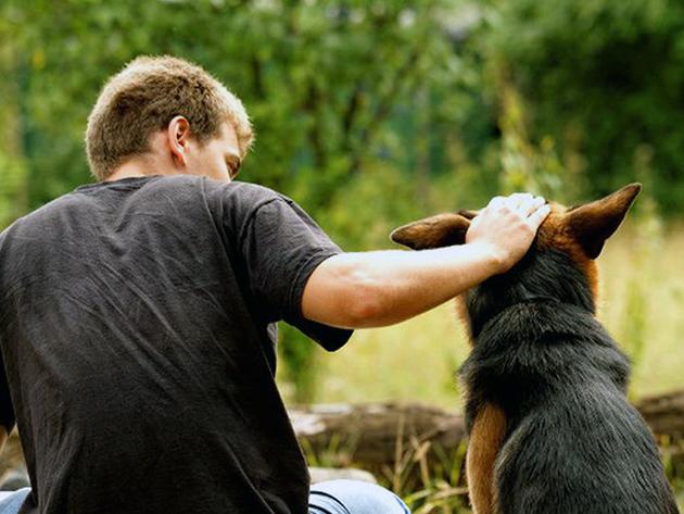Если собака болеет циститом — соблюдай правила личной гигиены