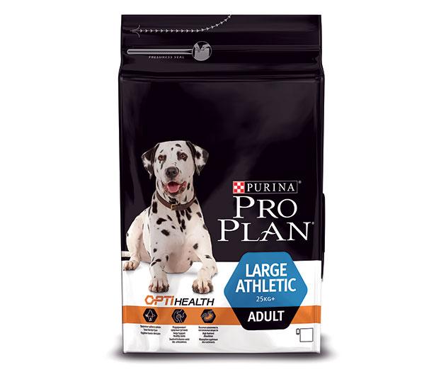 У крупных пород собак в обязательном порядке в рационе, должен присутствовать белок