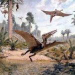 Птеродактиль (лат. Pterodactylus)