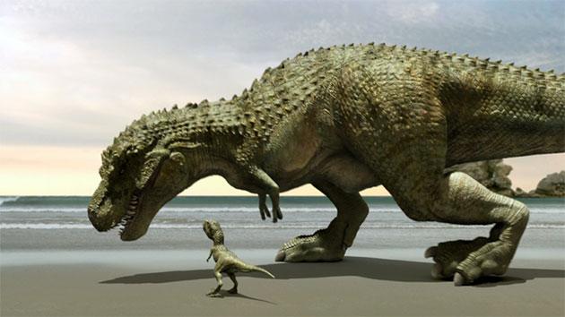 Половозрелой самкой тарбозавра откладывалось несколько яиц