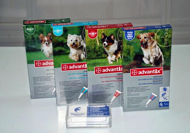 Оба активных ингредиента адвантикса (имидаклоприд и перметрин) достаточно токсичны