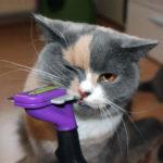 Фурминатор для кошки