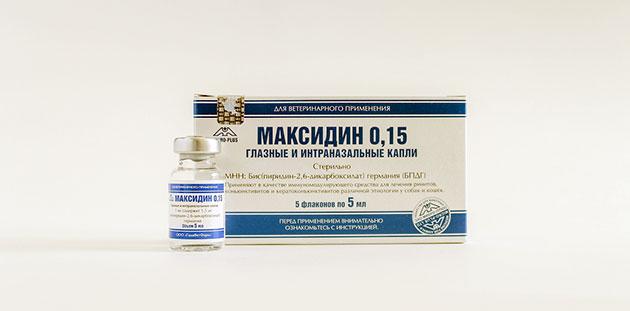 Максидин отличается высокой эффективностью