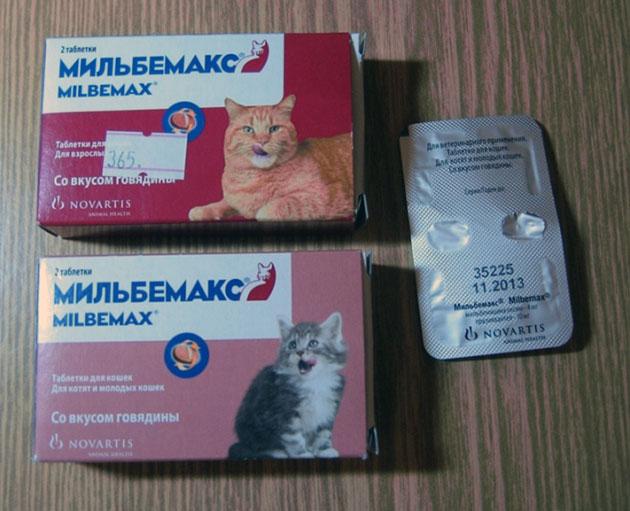 У мильбемакса есть противопоказания, поэтому прежде чем начать применять этот препарат проконсультируйтесь со специалистом