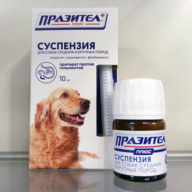 Пирантел для собак