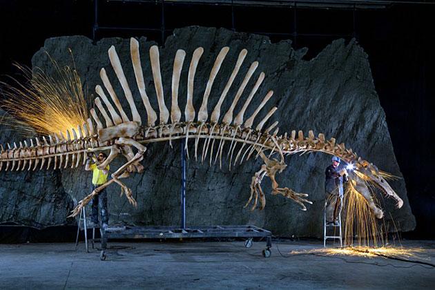 Первые останки спинозавра были обнаружены в долине Бахария в Египте в 1912 году