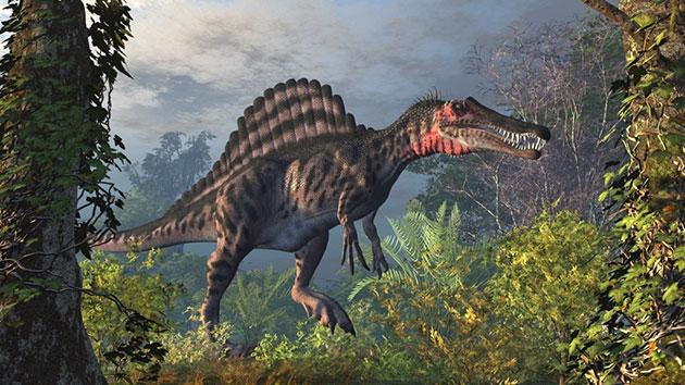 Спинозавр (лат. Spinosaurus)