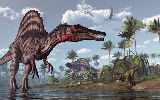 Палеонтологи сравнивают спинозавра с похожим хищником барониксом, который питался как рыбой, так и более мелкими динозаврами или другой наземной фауной