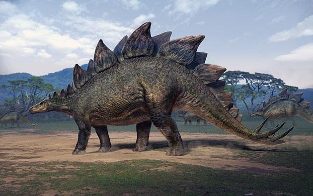 Стегозавр (лат. Stegosaurus)
