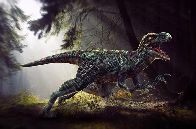 Велоцирапторам угрожали более проворные и крупные плотоядные динозавры