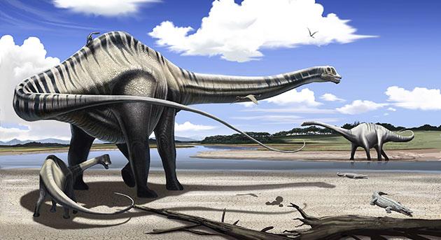 В 1970 году научный мир сошелся во мнении, что все зауроподы, включая Diplodocus, были наземными животными