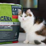 Корм Акана (Acana) для кошек