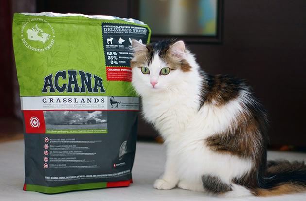 Корм Acana для кошек