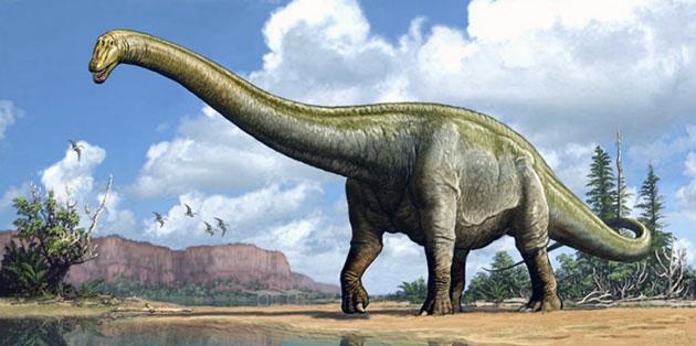 Диплодок (лат. Diplodocus)
