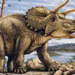 Трицератопс (лат. Triceratops)