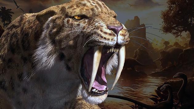 Саблезубые кошки (лат. Machairodontinae)
