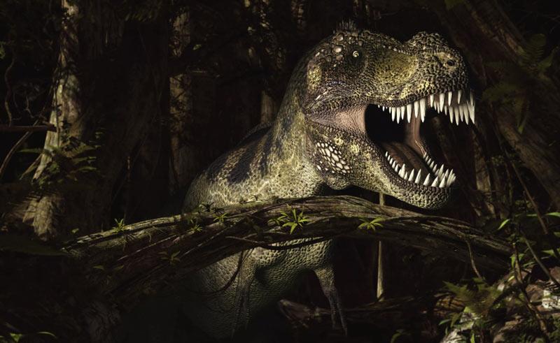 Силой укуса Tyrannosaurus rex намного превосходил как вымерших, так и ныне живущих хищников