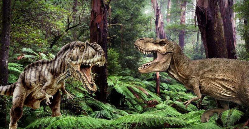 Гигантозавр оставался почти беспомощным перед опытным, злобным и живучим тираннозавром
