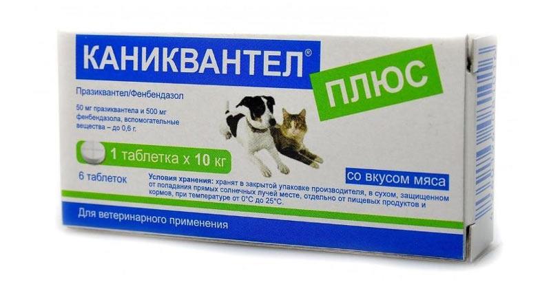 Каниквантел для собак - противогельминтное средство