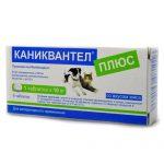 Каниквантел для собак — противогельминтное средство